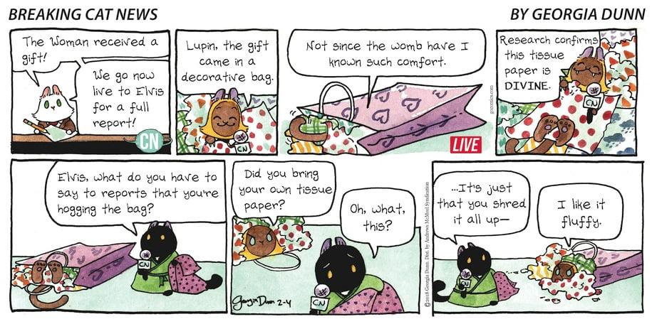 Potential Hazard to Cats: Gift Bag Handles