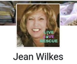 Jean Wilkes