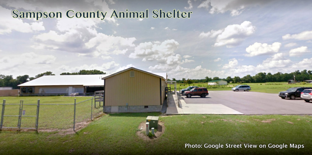 Sampson County Animal Shelter Violated the law and was allegedly cruel to animals.