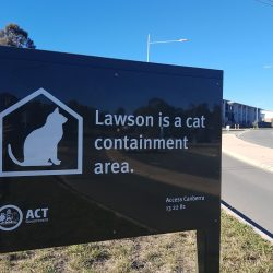 Suburb of Canberra Australia Is a Cat Containment Area