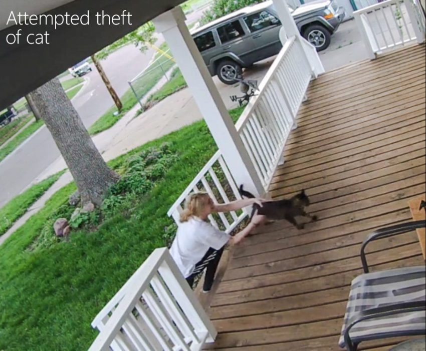 Attempted Theft Of A Cat Clearly Shown On Video