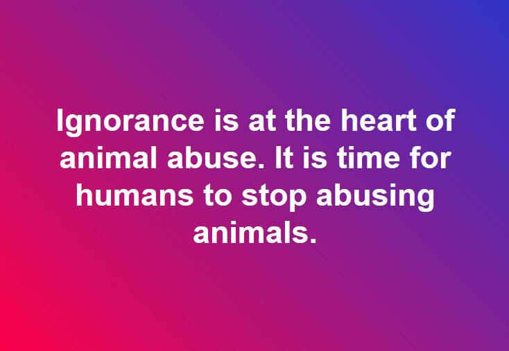 Ignorance is at the heart of animal abuse