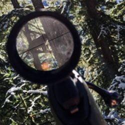 bobcat in the sights of a kill 'em boyz shooter