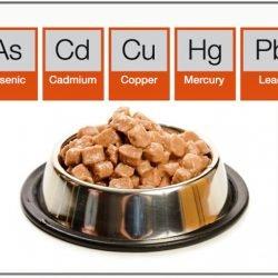 Heavy metals in pet food are carcinogenic