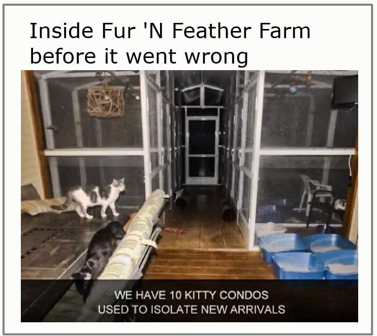 Inside Fur 'N Feather Farm