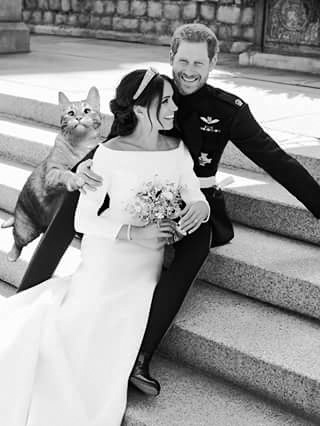 Meghan, Harry and Cat Wedding Photo