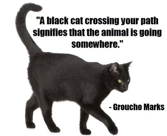 Black cat superstitions