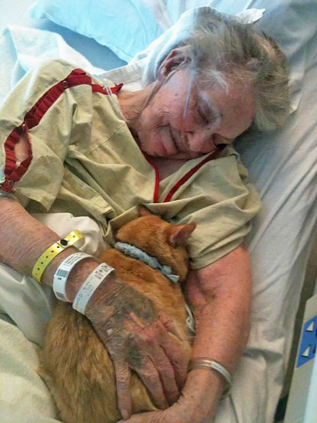 Dying elderly woman says goodbye to her cat Oliver