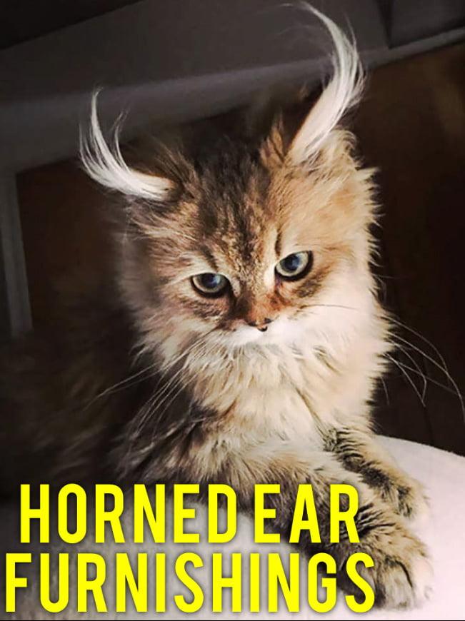 Horned Cat Ear Furnishings