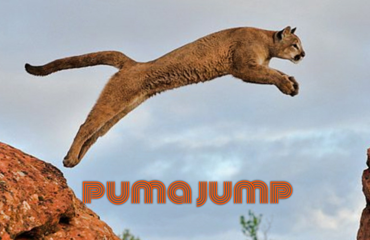 How far can pumas jump?