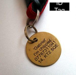 Cat collar ID tag