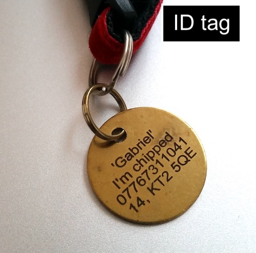 Cat collar ID tag