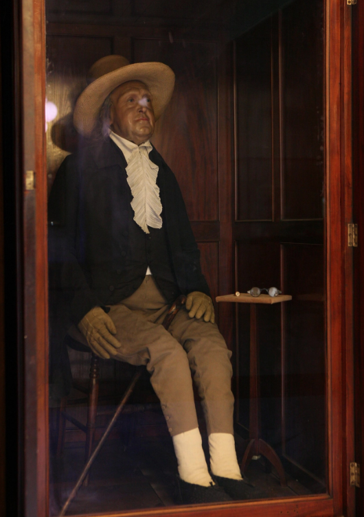 Bentham - he loved his cat