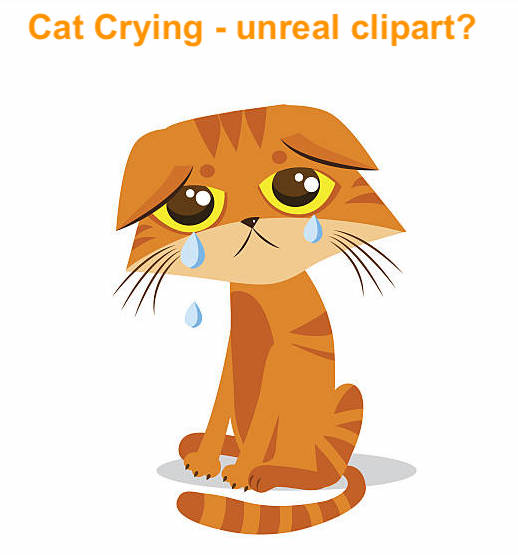 Clipart cat crying