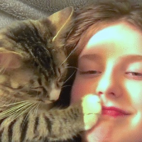 Strong bond between cat and owner1