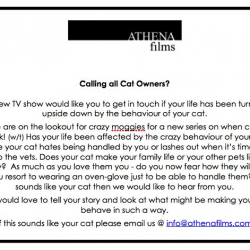 Athena Films advert looking for cats from hell and their owners