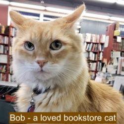 Bob a bookstore cat in California