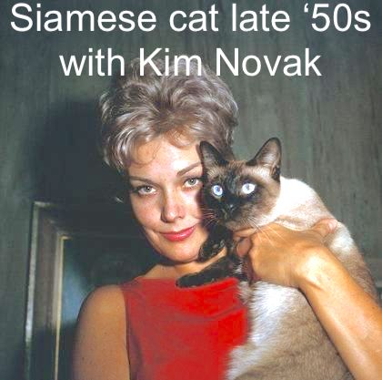 Kim Novak and Pyewacket late 50s