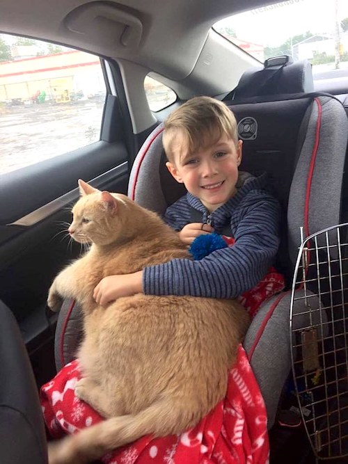 Picture of happy boy and content cat just after adoption