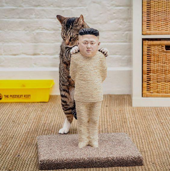 Kim Jong-un scratching post