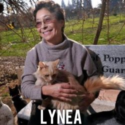 Lynea. The greatest cat lady on the planet