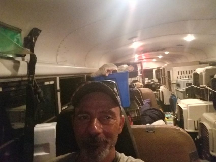 Picture of school bus cram-packed with rescue cats and dogs in carriers during Hurricane Florence