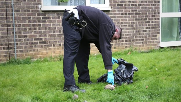 Police investigating Croydon Cat Killer