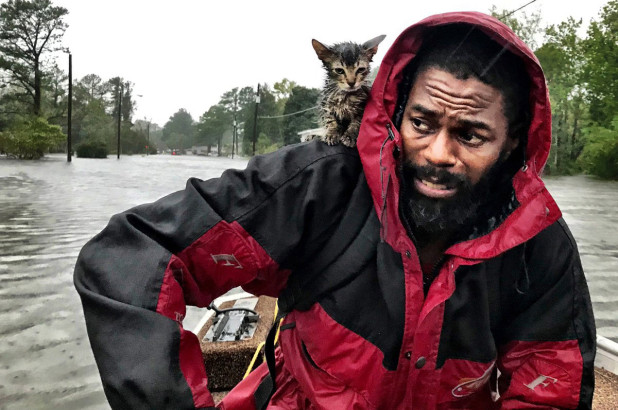 Robert Simmons and kitten rescued from flooding in N. Carolina