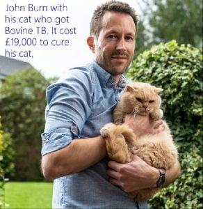 Cat who got bovine TB