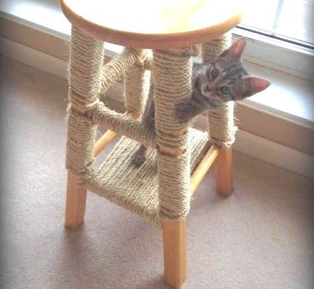 Young cat uses custom built cat scratcher
