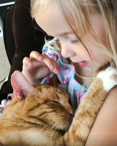 Young girl sings to ginger tabby
