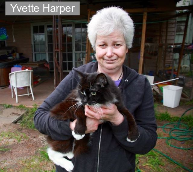 Yvette Harper with one of her cats