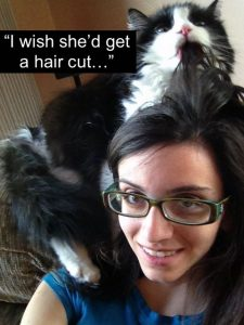 Cat grooming a person's hair