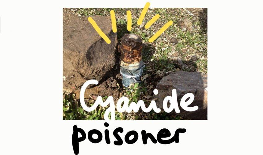 Cyanide poisoner M-44