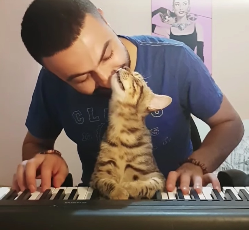Ecstatic cat because he is with his human partner and the music helps too