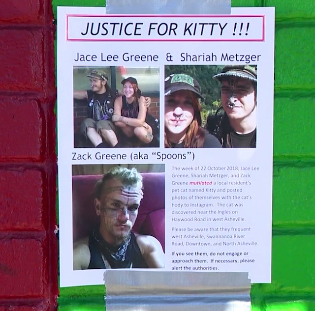 Justice for kitty poster
