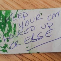 Keep your cat locked up or else (2)