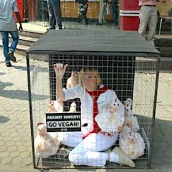 PETA likes this sort of protest