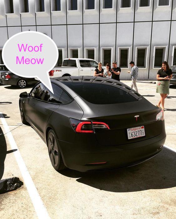 Tesla car with dog mode or pet mode