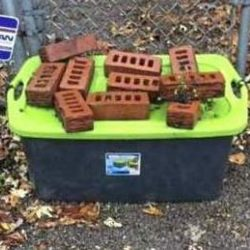 Cats abandoned inside sealed plastic containers