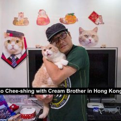 Chinese guy in Hong Kong with his cat