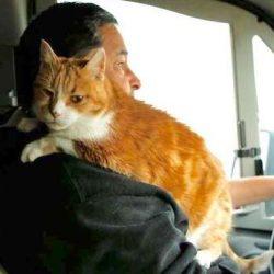 FB - Peaches rides shotgun in RV on return home from Camp Fire evacuation
