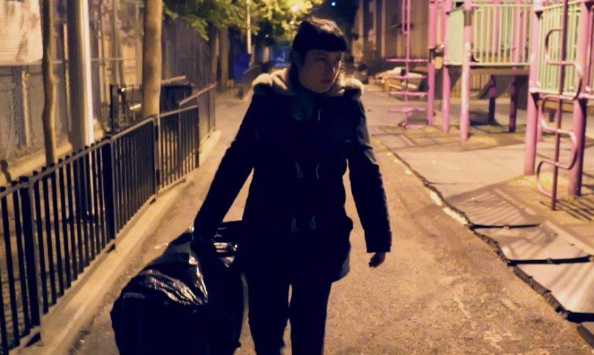 The Cat Rescuers - the film