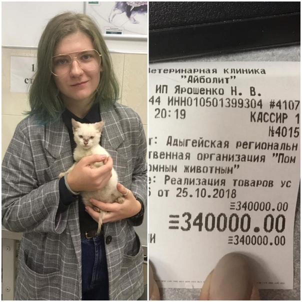 Young woman pays off shelter's 5000 dollar vet bill