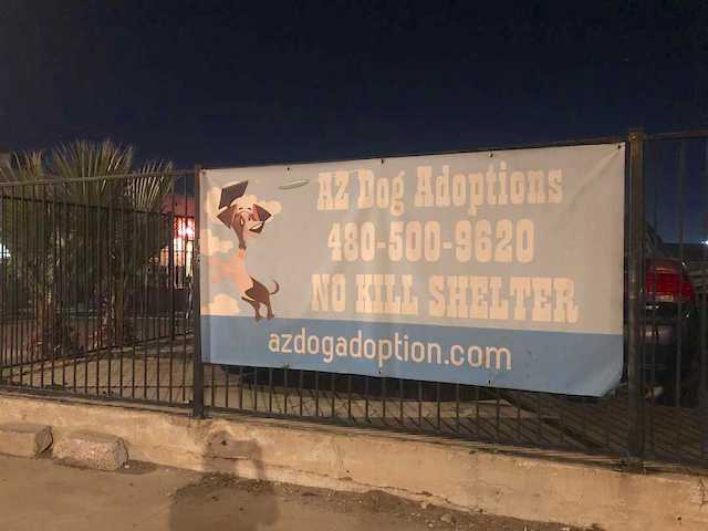 AZ Dog Adoptions