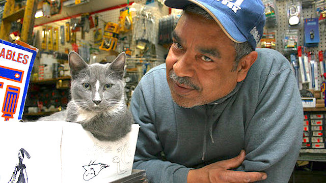 Bodega cat and store owner