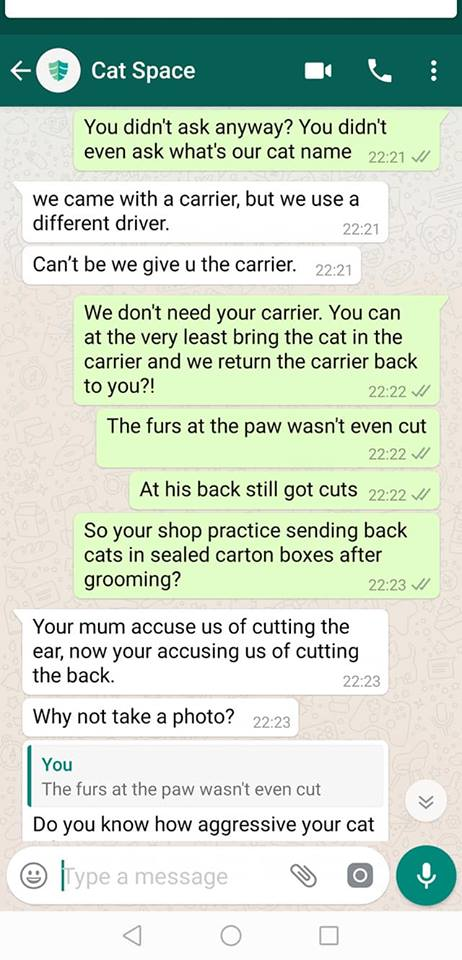 Cat comes back from groomers in cardboard box - ensuing text message argument.