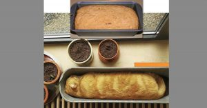 Cat looking like loaf in baking pan