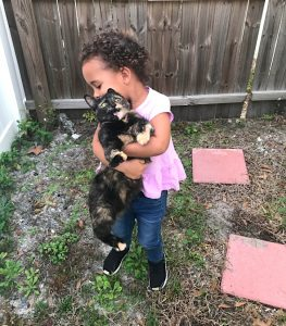 How a child should not carry a cat