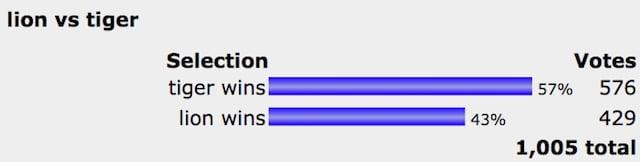 Lion versus tiger poll result